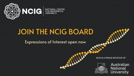 Join the NCIG Board header image